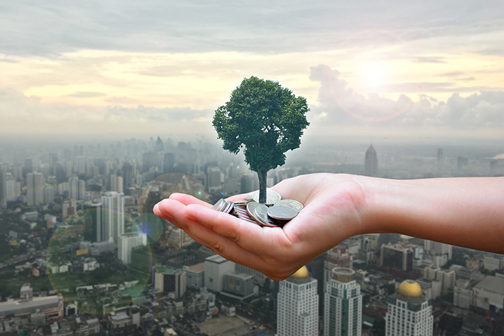 Tree growing out of coins held in human hand overlooking city